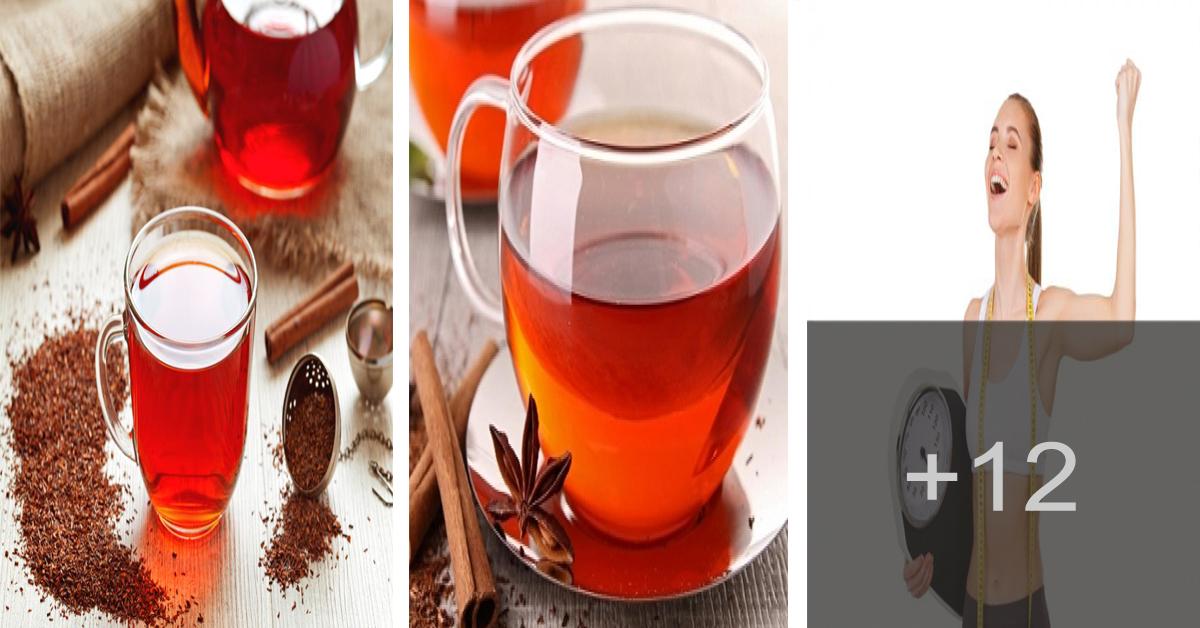 Aprende como adelgazar rápido con té rojo
