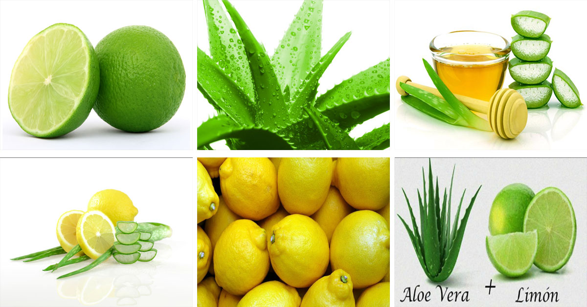 Baje de peso con licuado de áloe vera y limón